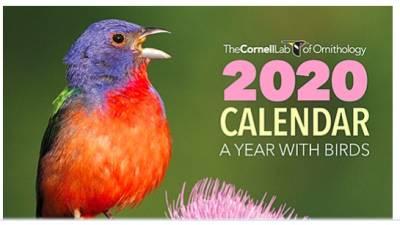 2020 Cornell Lab Calendar