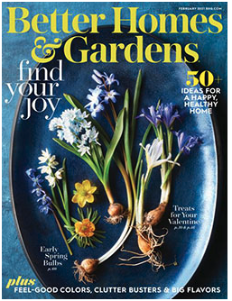 Free 2-Year Subscription to Better Homes and Gardens Magazine