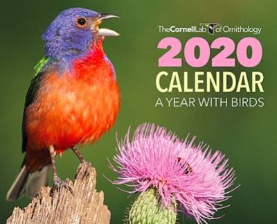 Free 2020 Cornell Lab Calendar