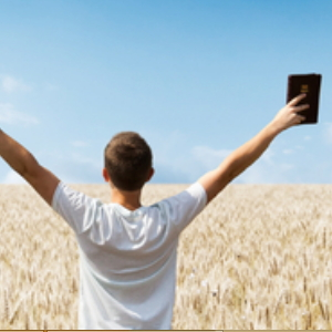 Request  Free Bible From Uplifting Books