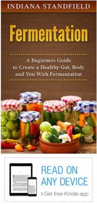 Free Kindle Book - Fermentation: A Beginners Guide to Create a Healthy Gut, Body