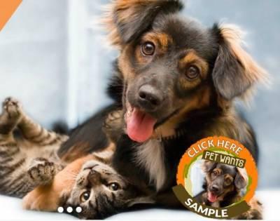 Free Sample of Pet Wants Pet Food