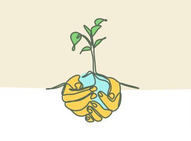 Free Tree Seedling OR Free Wildflower Seed Card
