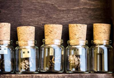 Free Wine Cork USB Flash Drive