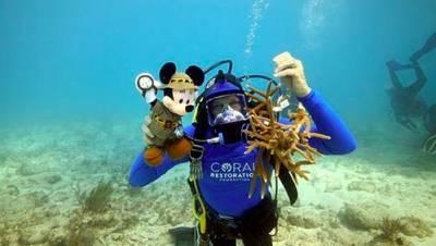 Win a trip for 4 to Walt Disney